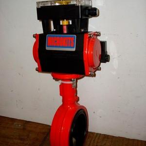Válvula automatizada
