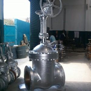 Valvula gaveta para gas