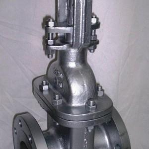 Valvula gaveta de ferro